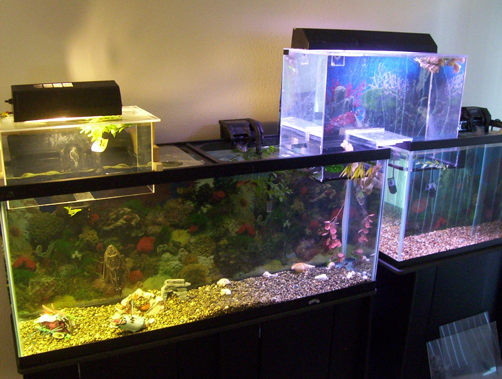 Understanding upside down aquariums with diagrams the for Acrylic fish tank diy