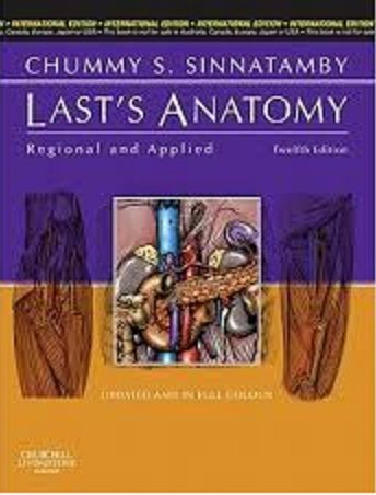 Lasts anatomy pdf all medical pdfs pinterest anatomy pdf lasts anatomy pdf fandeluxe Images