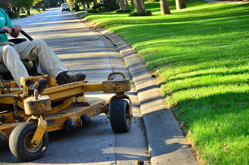 Perfect lawn service from edge to edge. landscaping