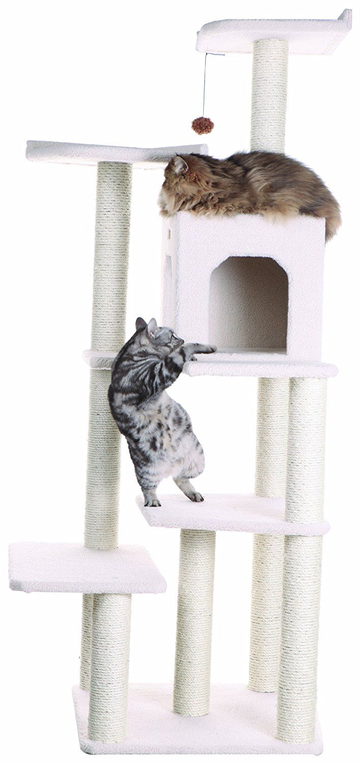 Armarkat Cat Tree Furniture Condo, Height  60 Inch To 70 Inch