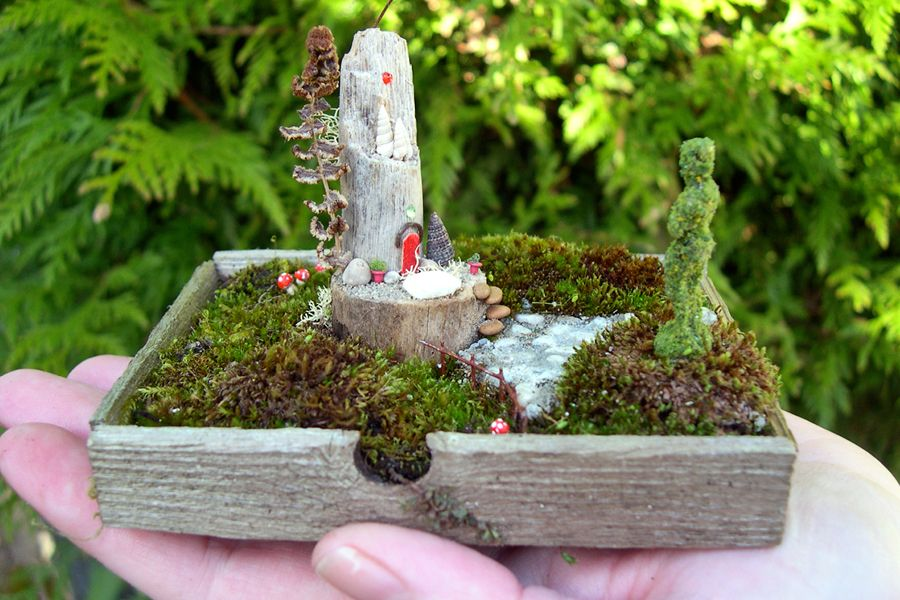 Miniature gardening\u0027s wee wonderful worlds in the palm of your hand
