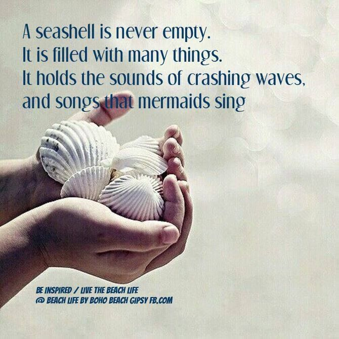 Seashells Poems 6