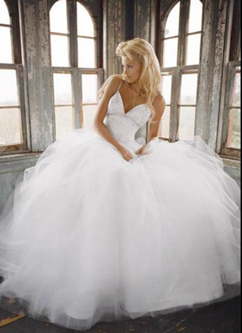 Puffy Wedding Dress Fairy Tale Wedding Dress Ball Gowns Wedding Wedding Dresses