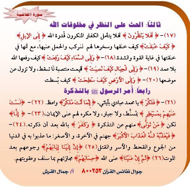 Pin De Khaled Bahnasawy En ٨٨ سورة الغاشية