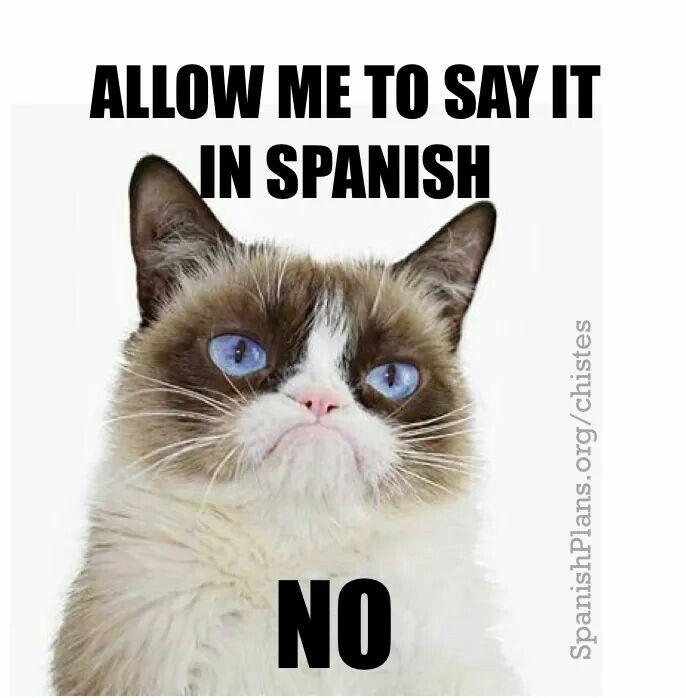 Pin By Jenny Lobb On Humorous Spanish Teacher Memes Spanish Memes Funny Spanish Memes