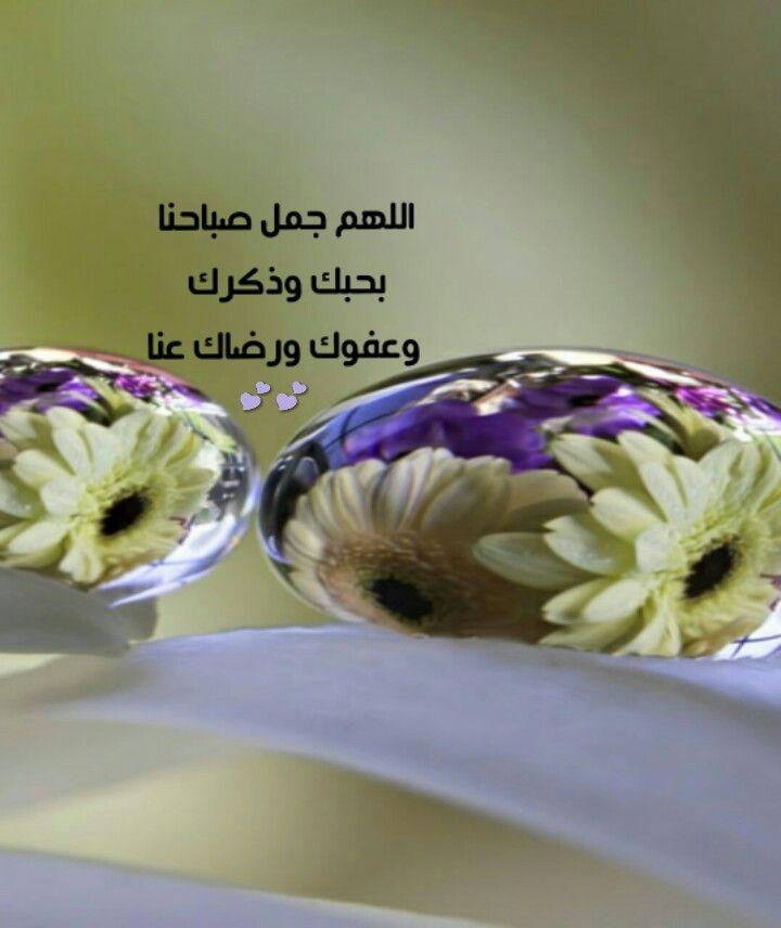اللهم جمل صباحنا بحبك Food Ullo Vegetables