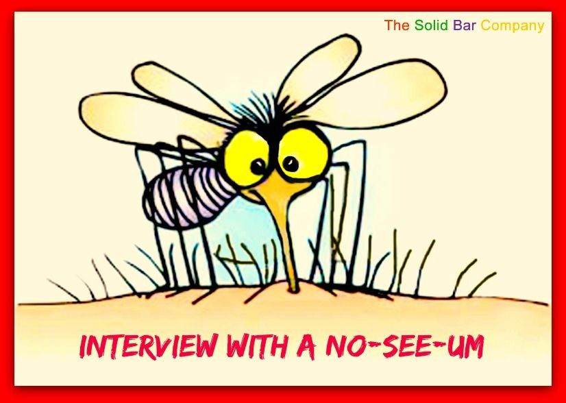 Interview with a midge or noseeum the lowdown on their