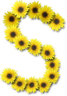 Alfabetos Lindos Para Imprimir Margaridas Flores Margaridas E