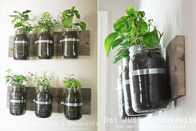 Interior Garden Plant Decor Interior Garden Plants