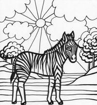 Planse De Colorat Animale Salbatice Zebra Activitaticopii