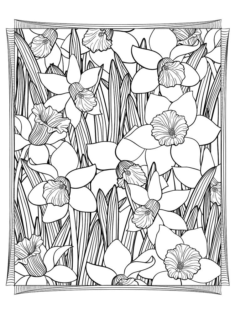 advanced bible coloring pages - photo#18