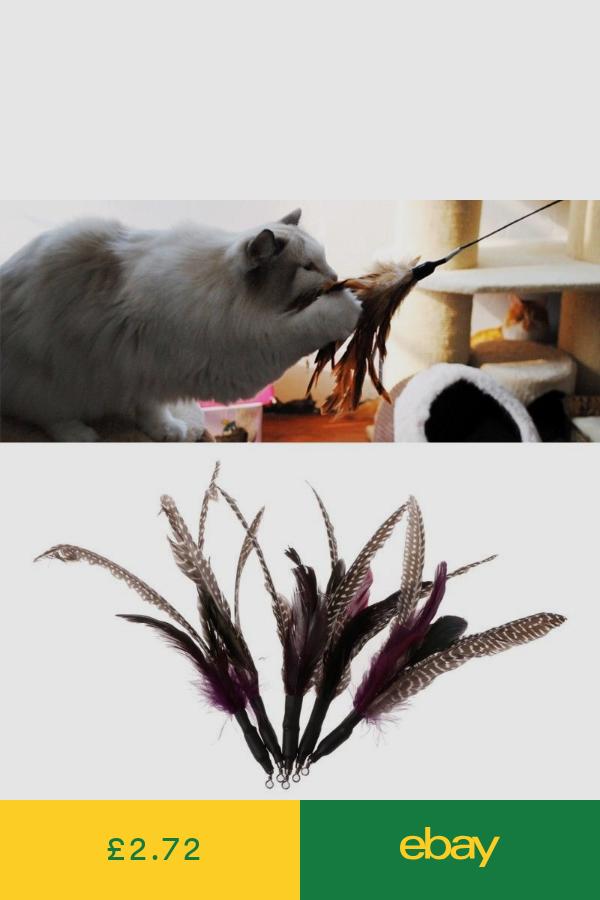 Toys Pet Supplies Ebay Handmade Pet Pet Toys Pets Cats