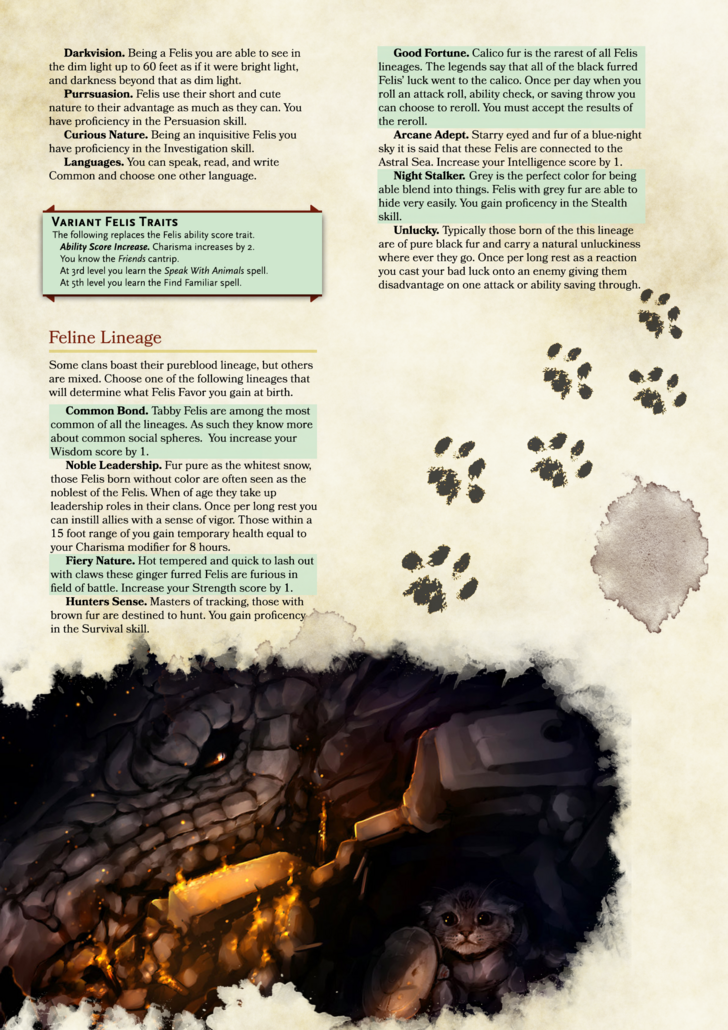 D&D Felis Race Homebrew in 2019   Animation   Dungeons, dragons