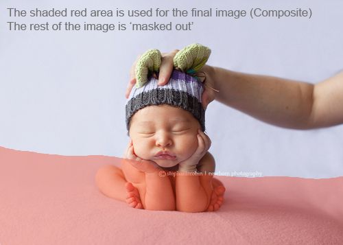 Every wonder how photographers take super cute pictures of newborns