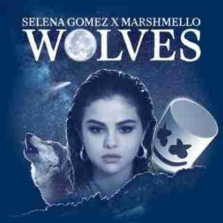 Download Mp3 Instrumental Selena Gomez Wolves Ft Marshmello Selena Gomez Album Selena Gomez Cover Songs By Selena Gomez
