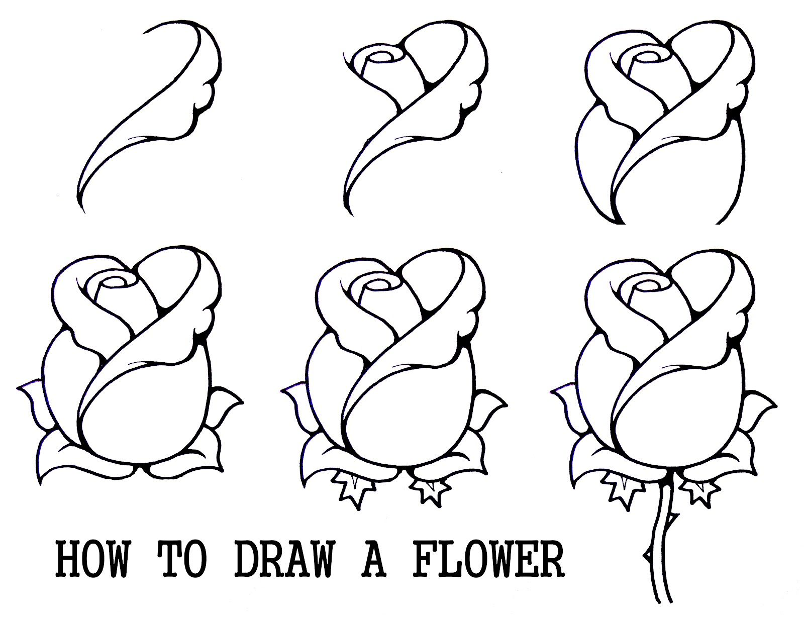How To Draw A Rosebud Easy Flower Drawingsrose