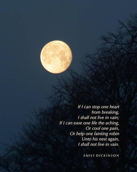 Pin On Words Of Wisdom The freedom of the moon by robert frost frost's moon freedom poem begins: pin on words of wisdom