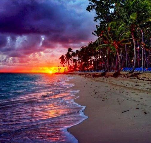 The Beach  @ Hawaii  #Ohana