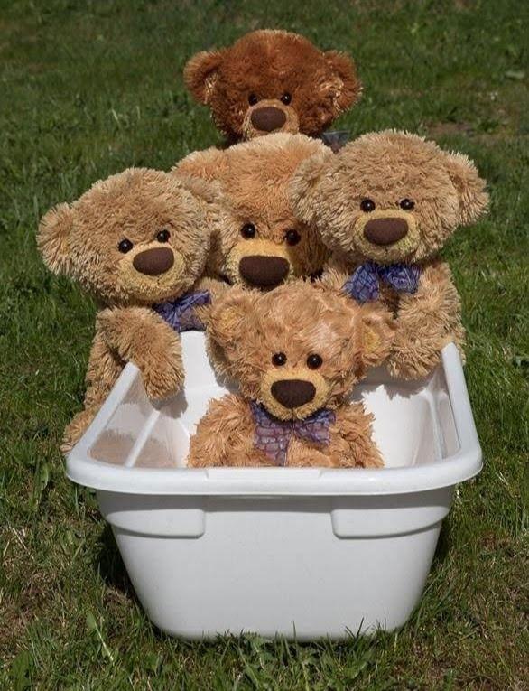 Teddys, Schönes und Altes