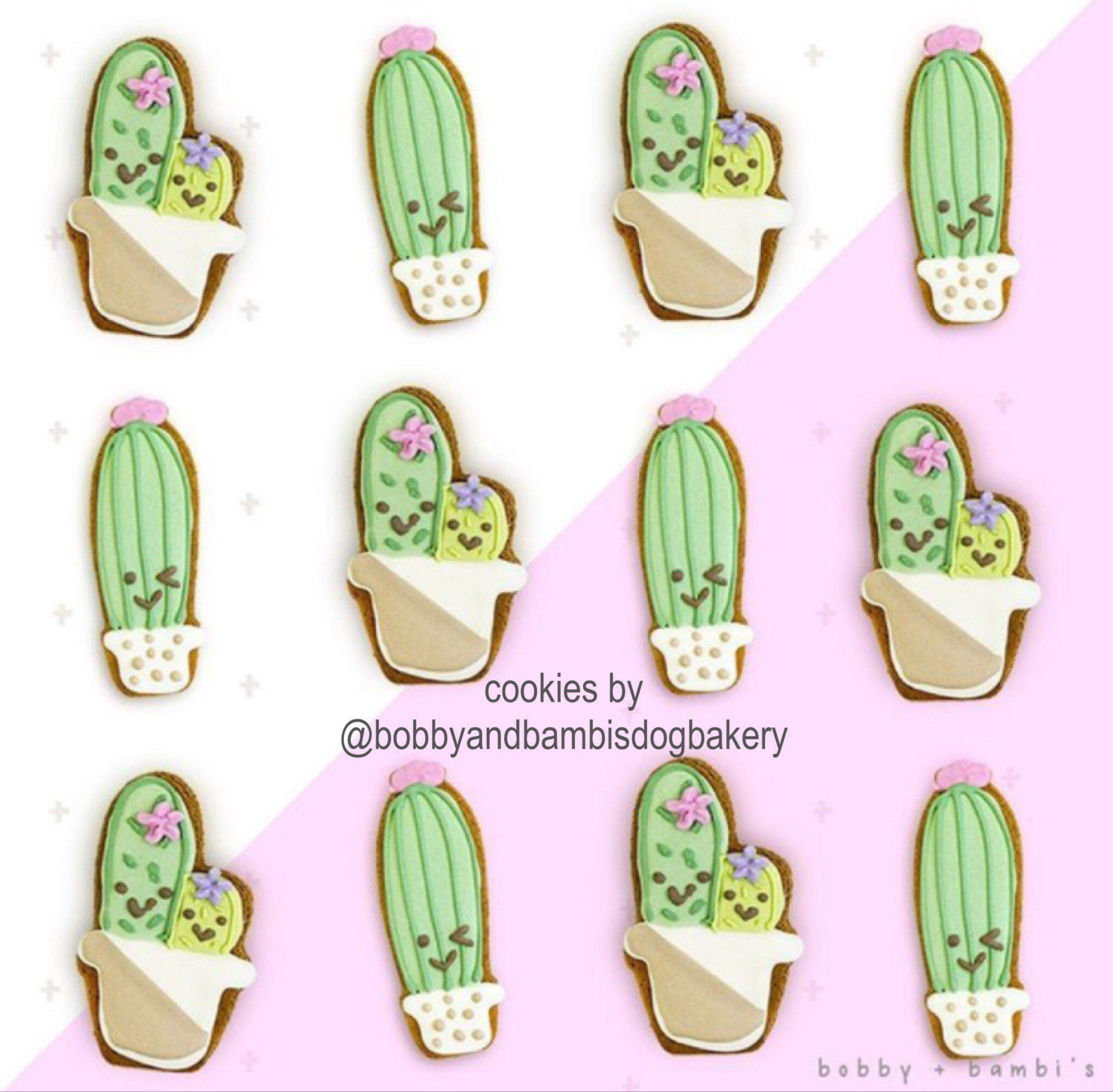 Cactus in pot cookie cutter Succulent in pot cookie cutter.