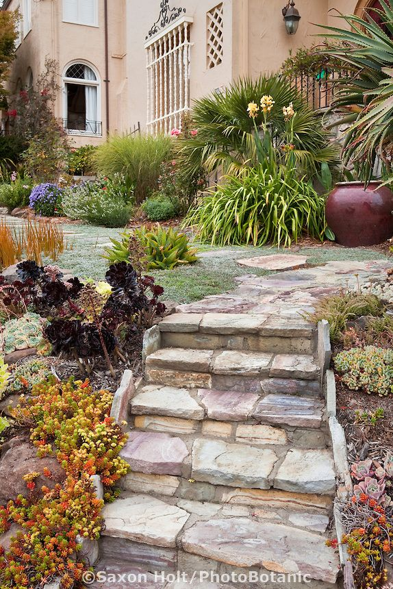 Stone Steps Entry Steps Into California Front Yard Garden With