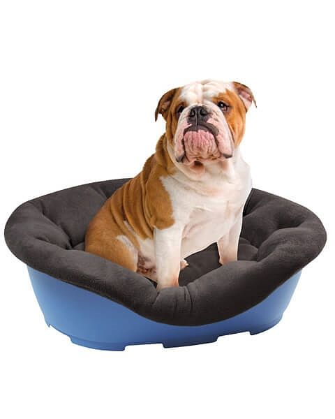 Quality Plastic Dog Bed Easy Fit Cover Dog Bed Dogs Bed