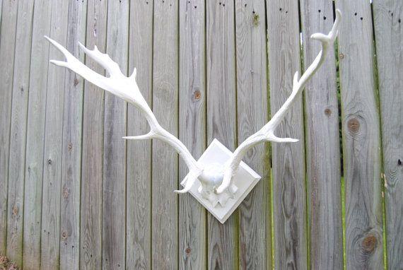 Large Faux Deer Antlers - White - Antler Rack Wall Mount LA01   Omg ...