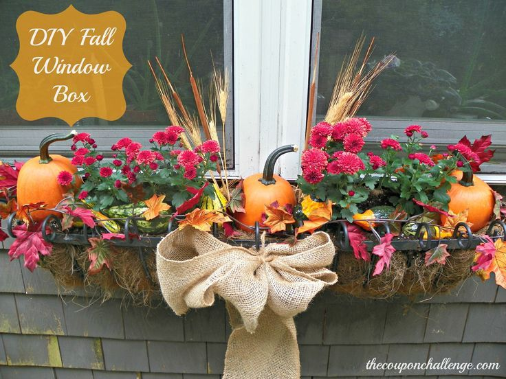 1000 Ideas About Fall Window Bo On Pinterest