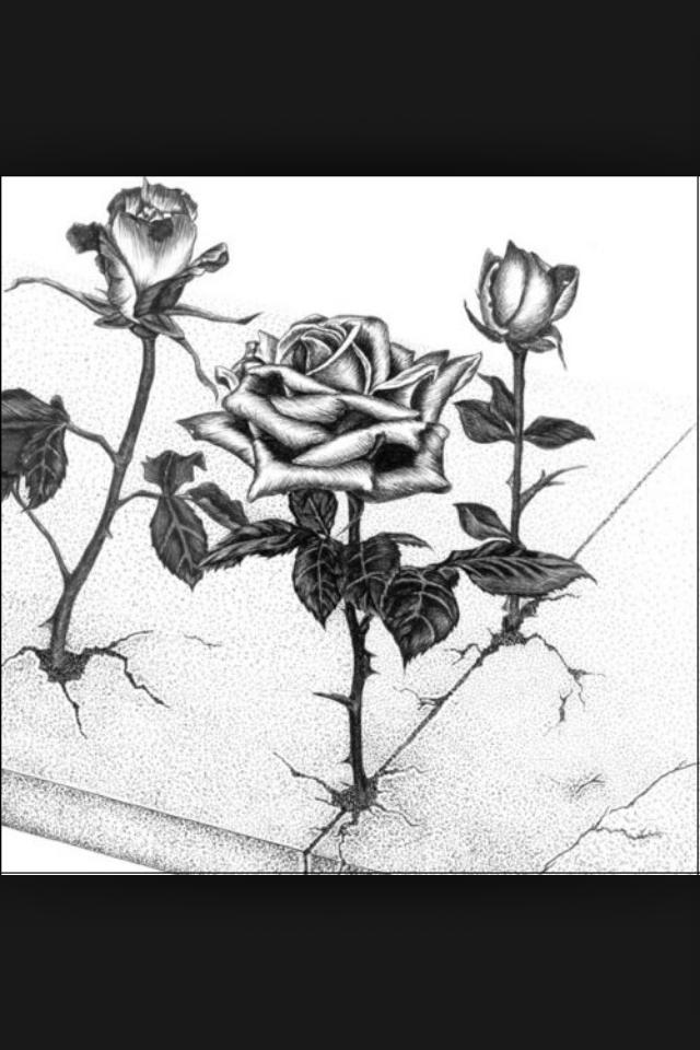 8e3e564793f55 Tupac ( the rose that grew from concrete )   dawn   Tattoos, Art ...