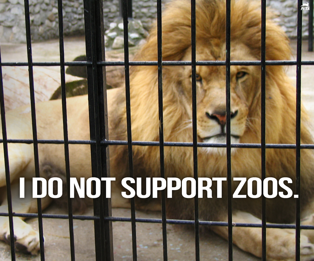 I do not support zoos