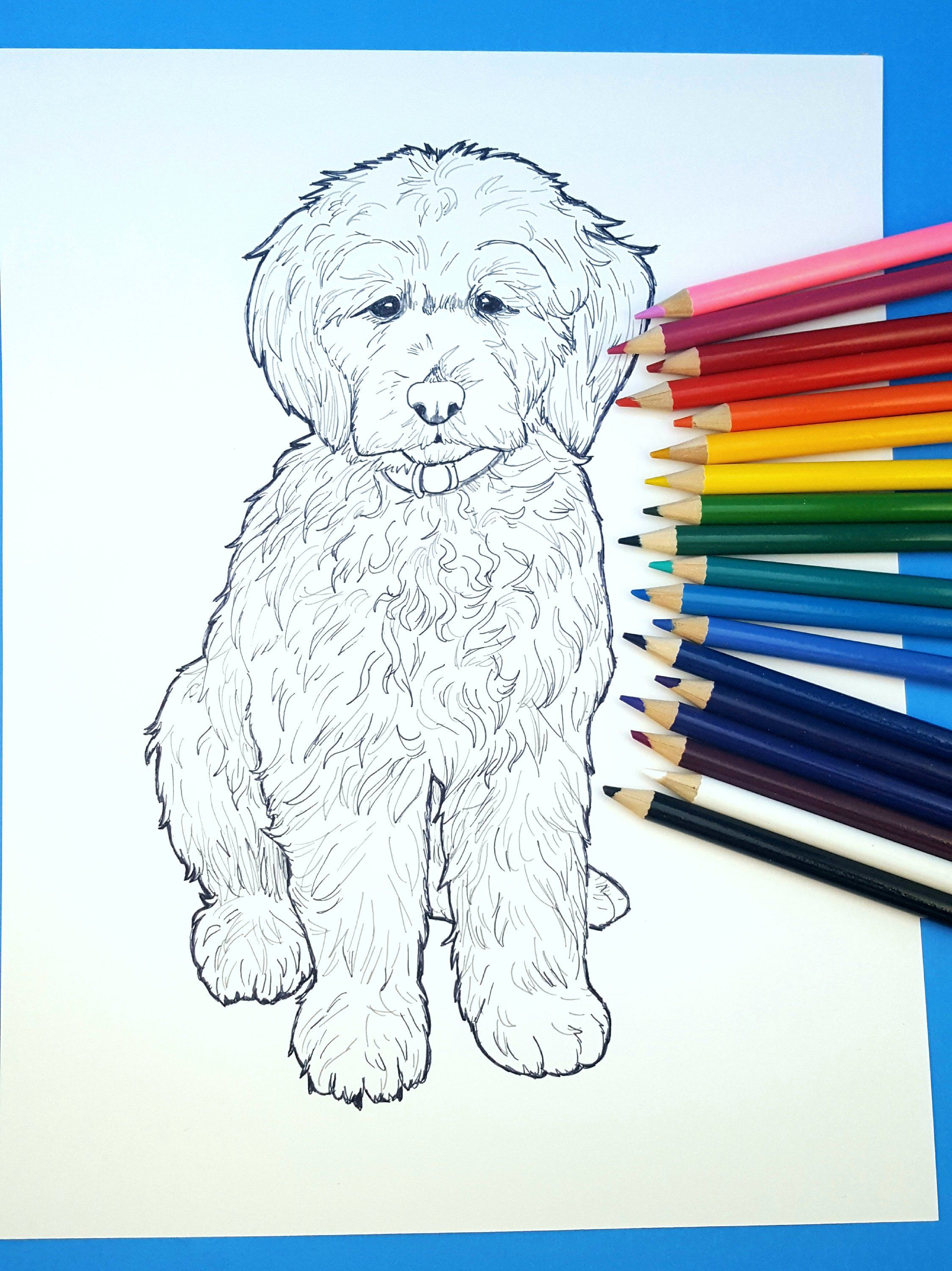 Custom Art Dog Coloring Page Dog Coloring Book Coloring For Kids
