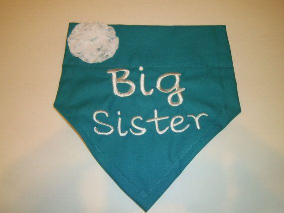 7b251a9661f Check out BIG Sister
