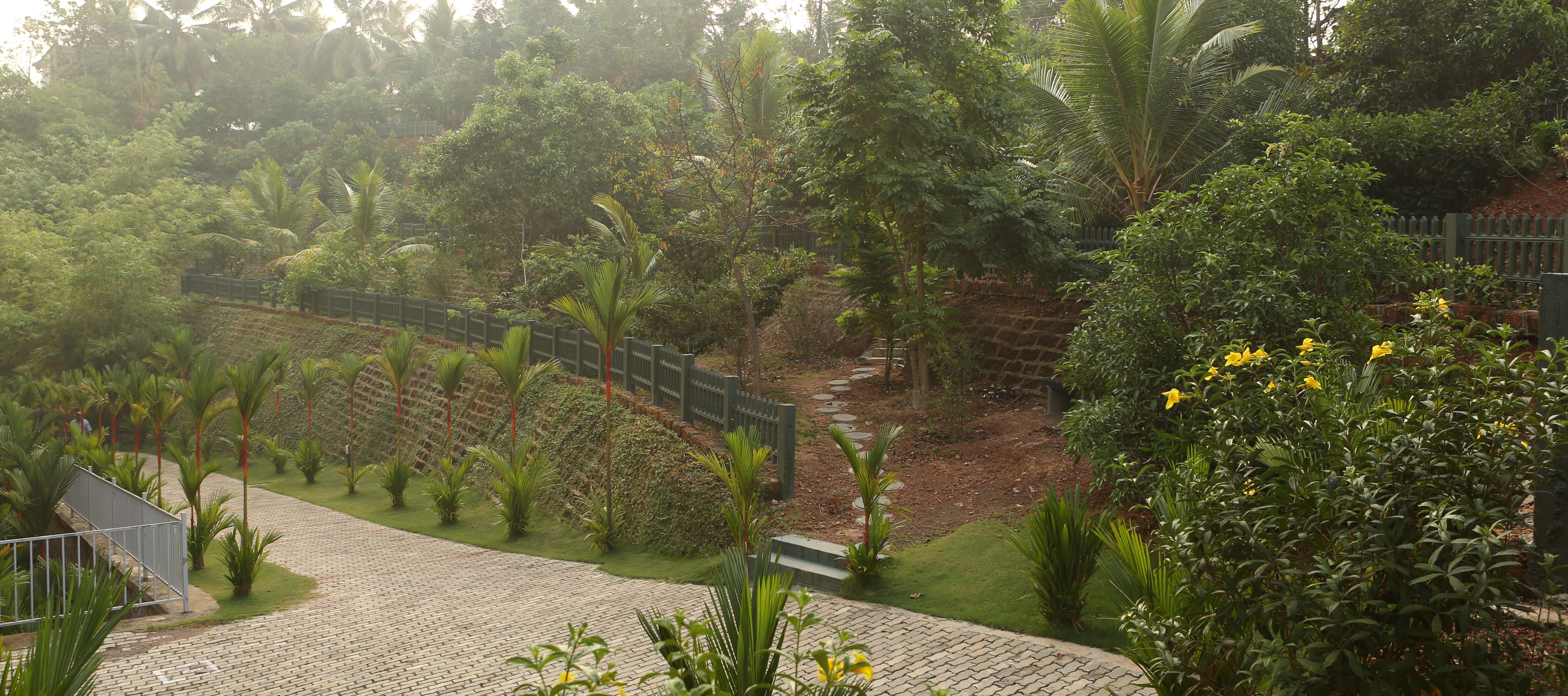 Fruit Garden in Olive Kalista !! Apartments & Bungalows in 8.54 ...