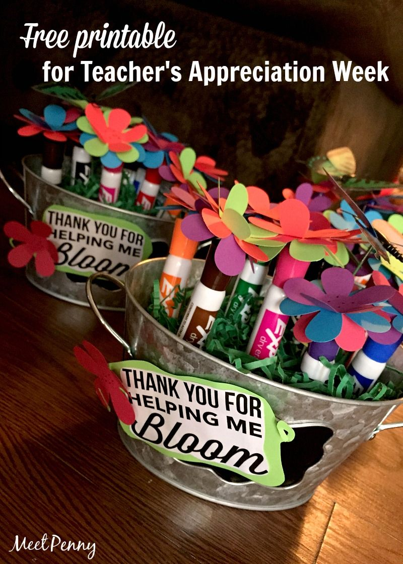 Easy Gift Idea for Teacher's Appreciation Week with