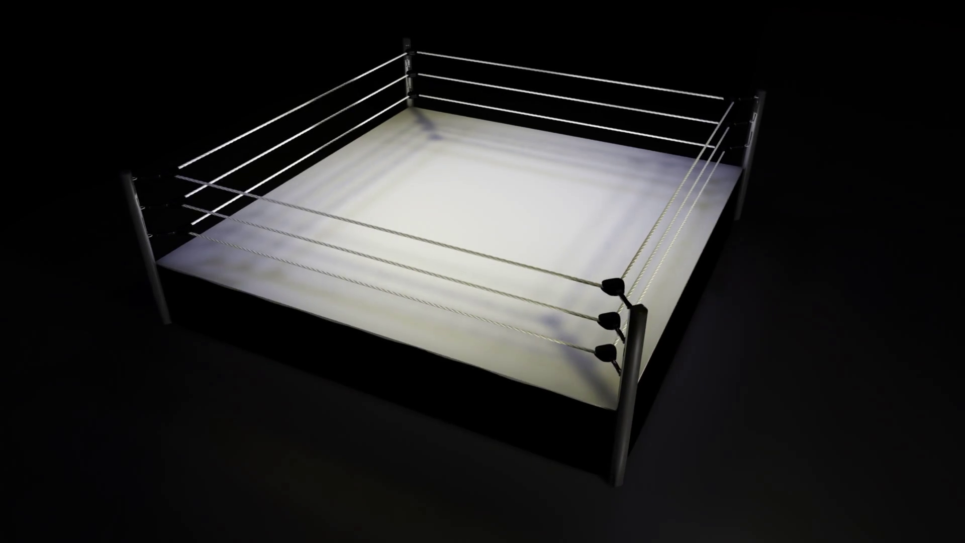 image result for wrestling ring scenery board the
