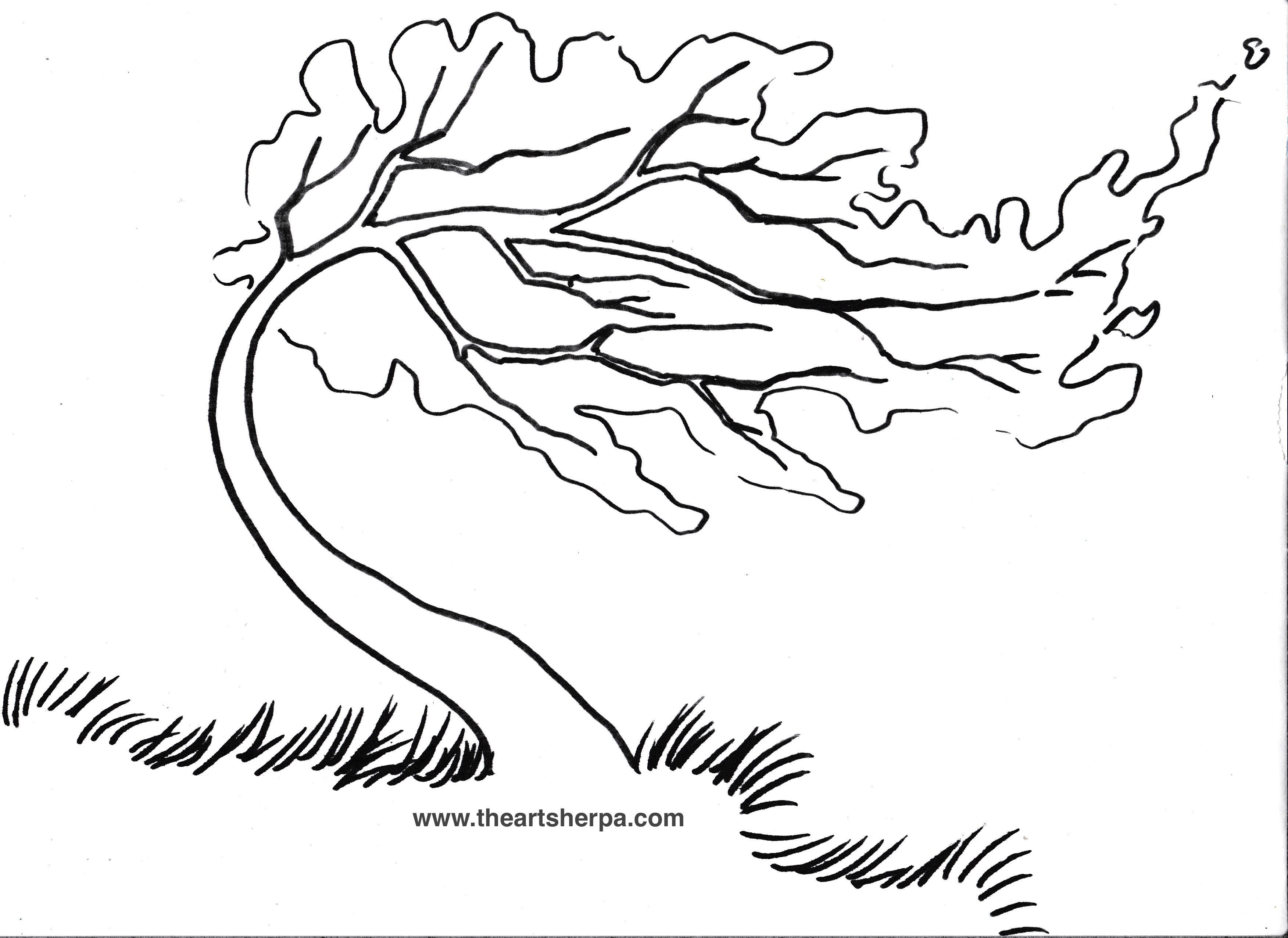 Trace Able For The Rainbow Willow Tree On Youtube With The