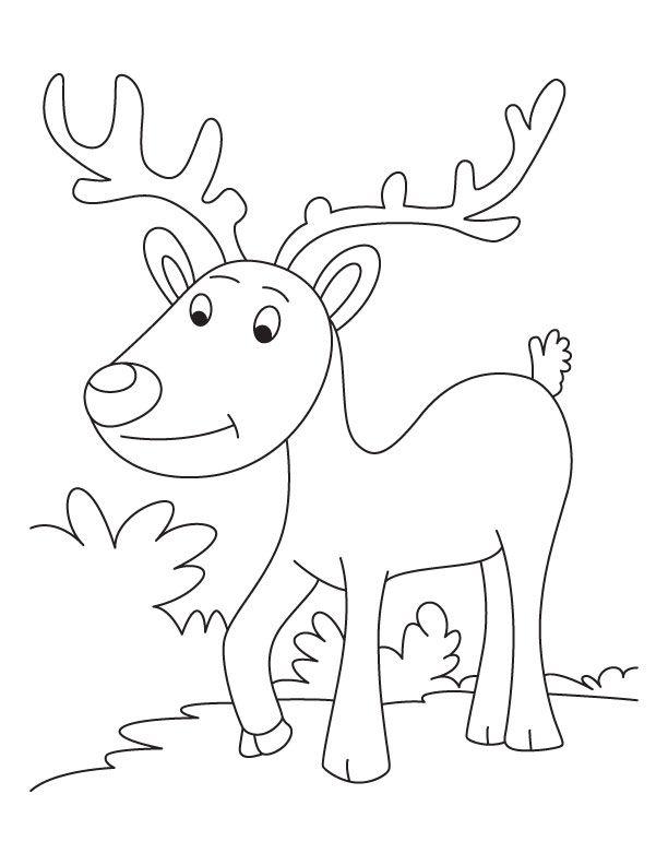 reindeer coloring pages 2. Reindeer Coloring Pages 2 Free Printable  Printables Pinterest