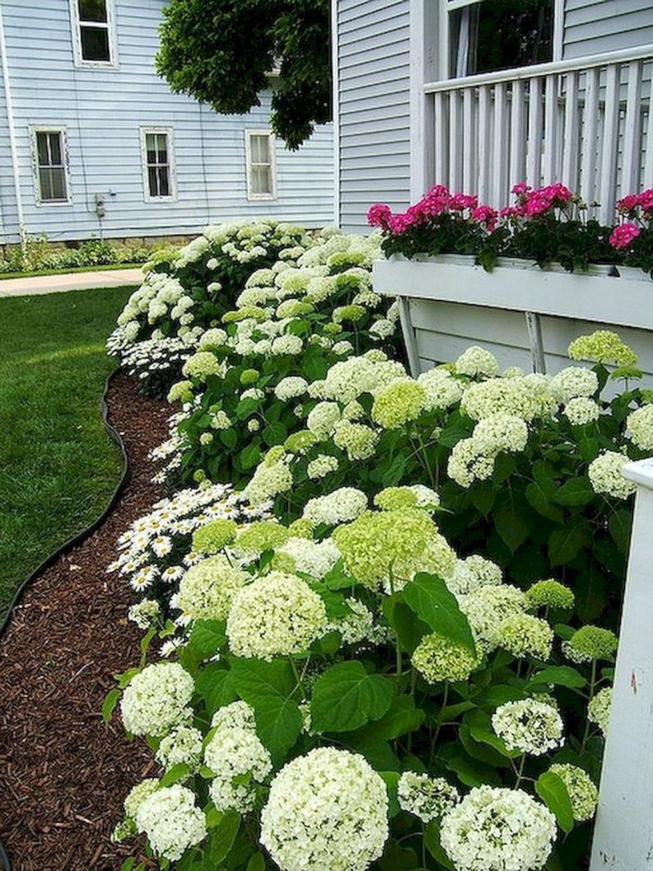 Colorful Landscaping Ideas With Low Maintenance Flower Bushes