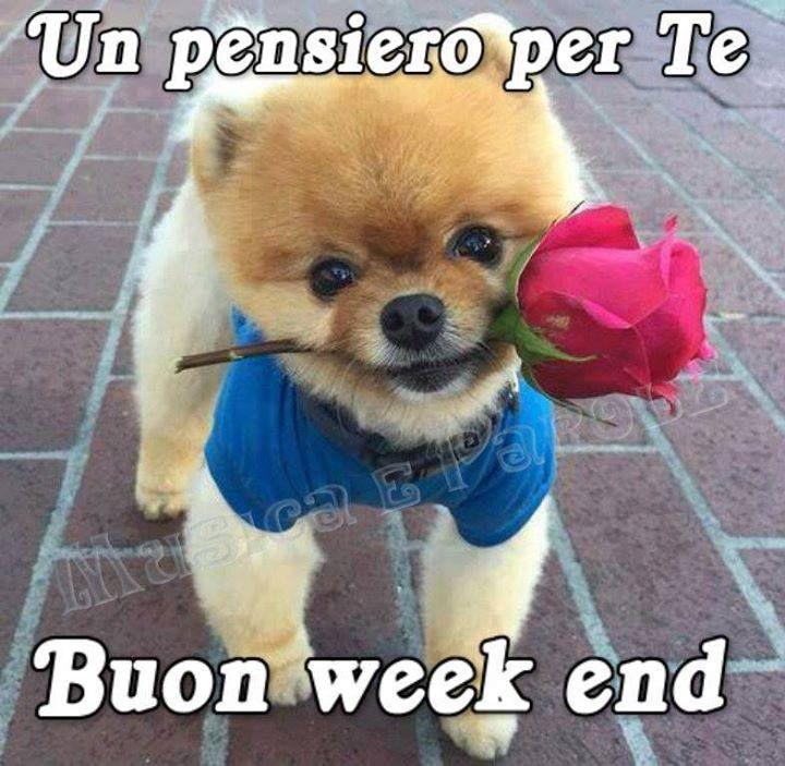 Amato Un pensiero per Te, Buon week end #buonweekend | Buongiorno  ID41
