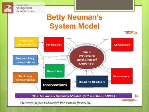 betty neuman systems theory