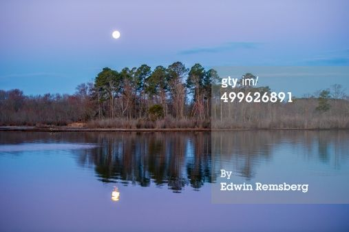 Riverbank With Moon Rise