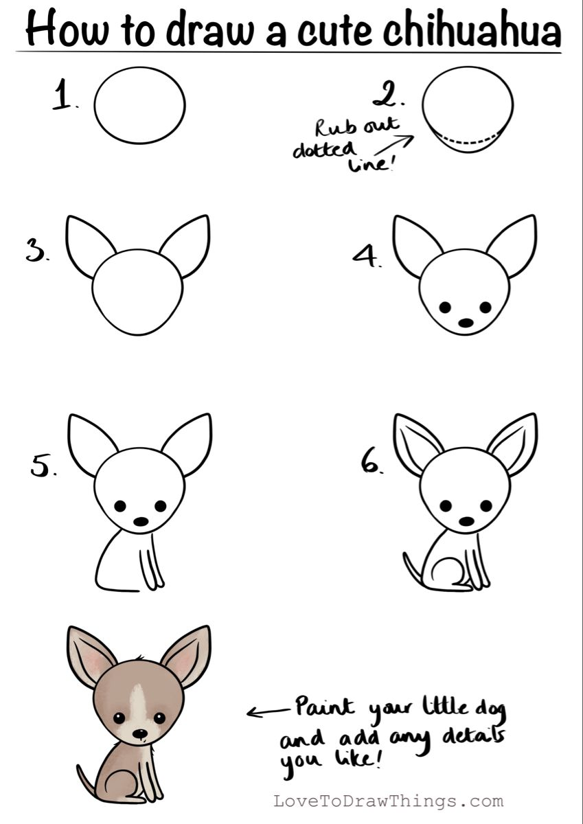 How To Draw A Cute Chihuahua In 6 Steps Art Drawings For Kids Easy Doodle Art Easy Doodles Drawings