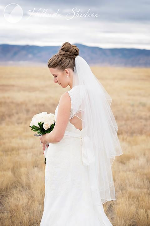 lovely bridal portrait of a bride with a low back dress and veil