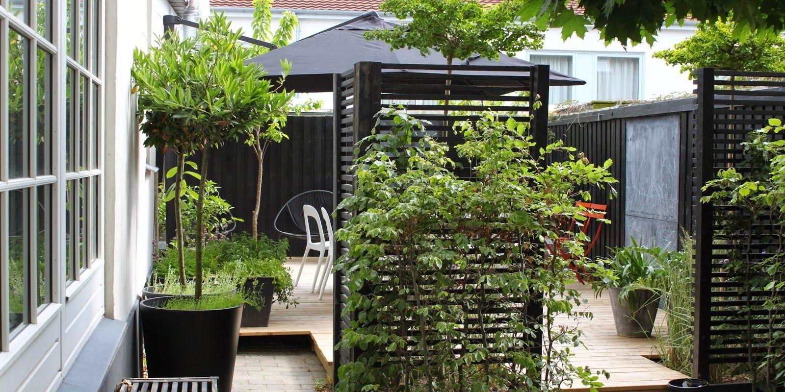 listehegn haveindretning pinterest pergolaer tr og google. Black Bedroom Furniture Sets. Home Design Ideas