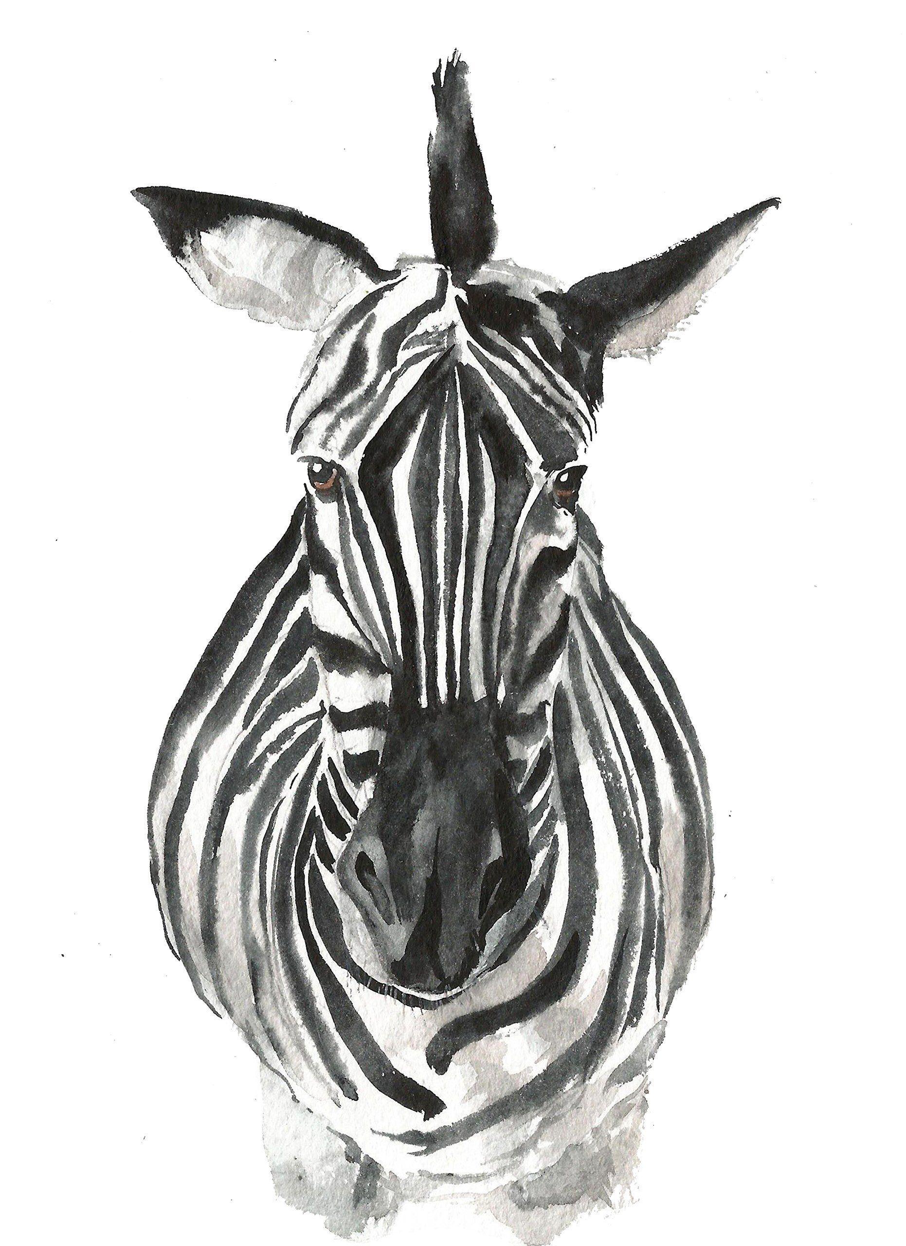 Zebra Wall Art zebra art #a020. zebra art print (8x10).zebra wall art.zebra