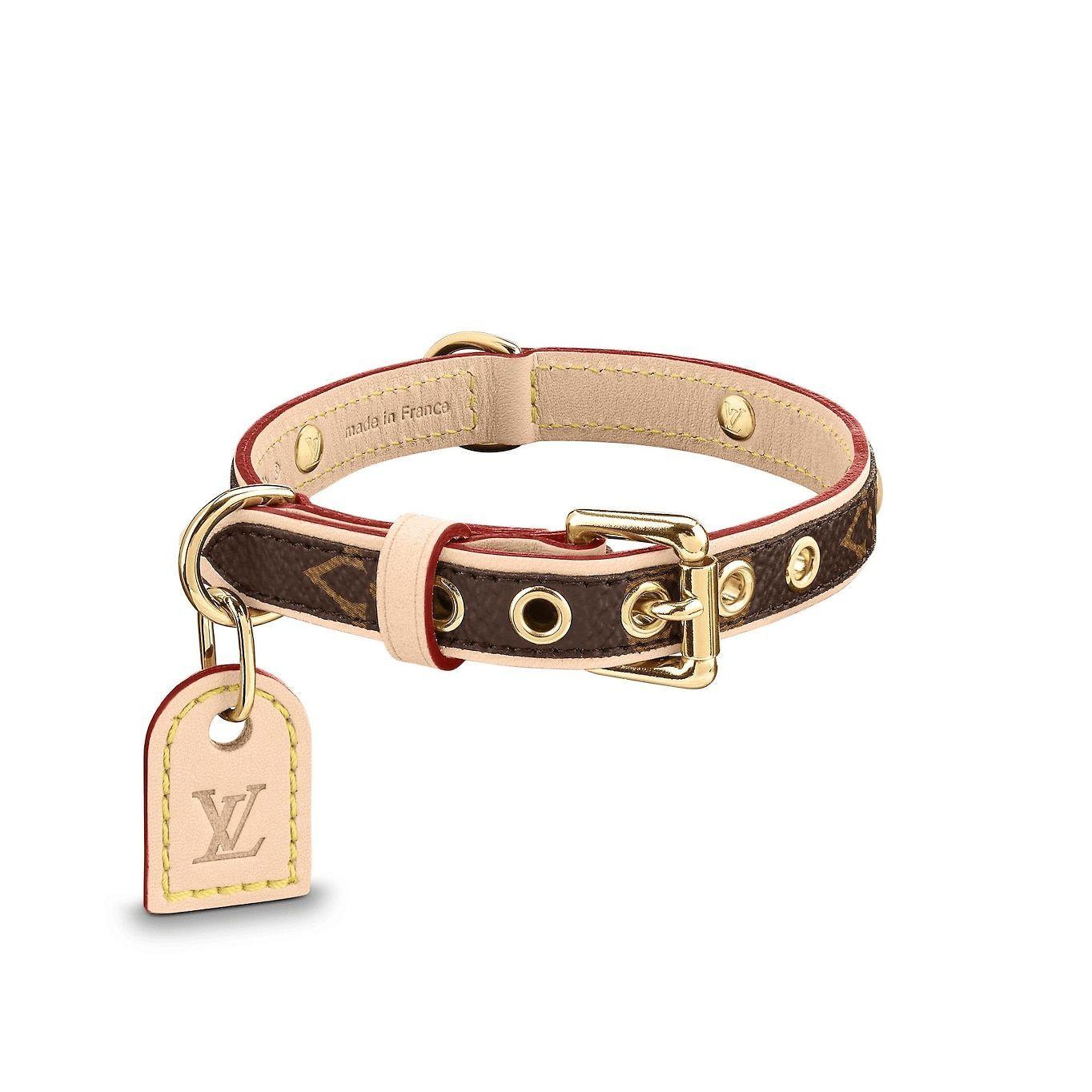 Baxter Dog Collar PM Louis vuitton dog collar, Louis