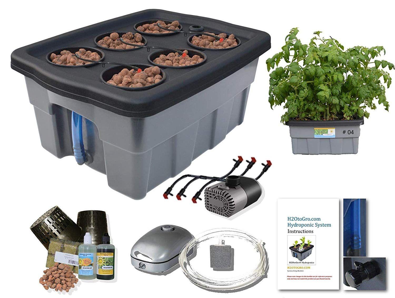 Amazon Com Complete Hydroponic System Self Watering Dwc Bubbler Kit 4 6 H2otogro Garden Outdoor Hydroponics Hydroponics System Hydroponic Grow Systems