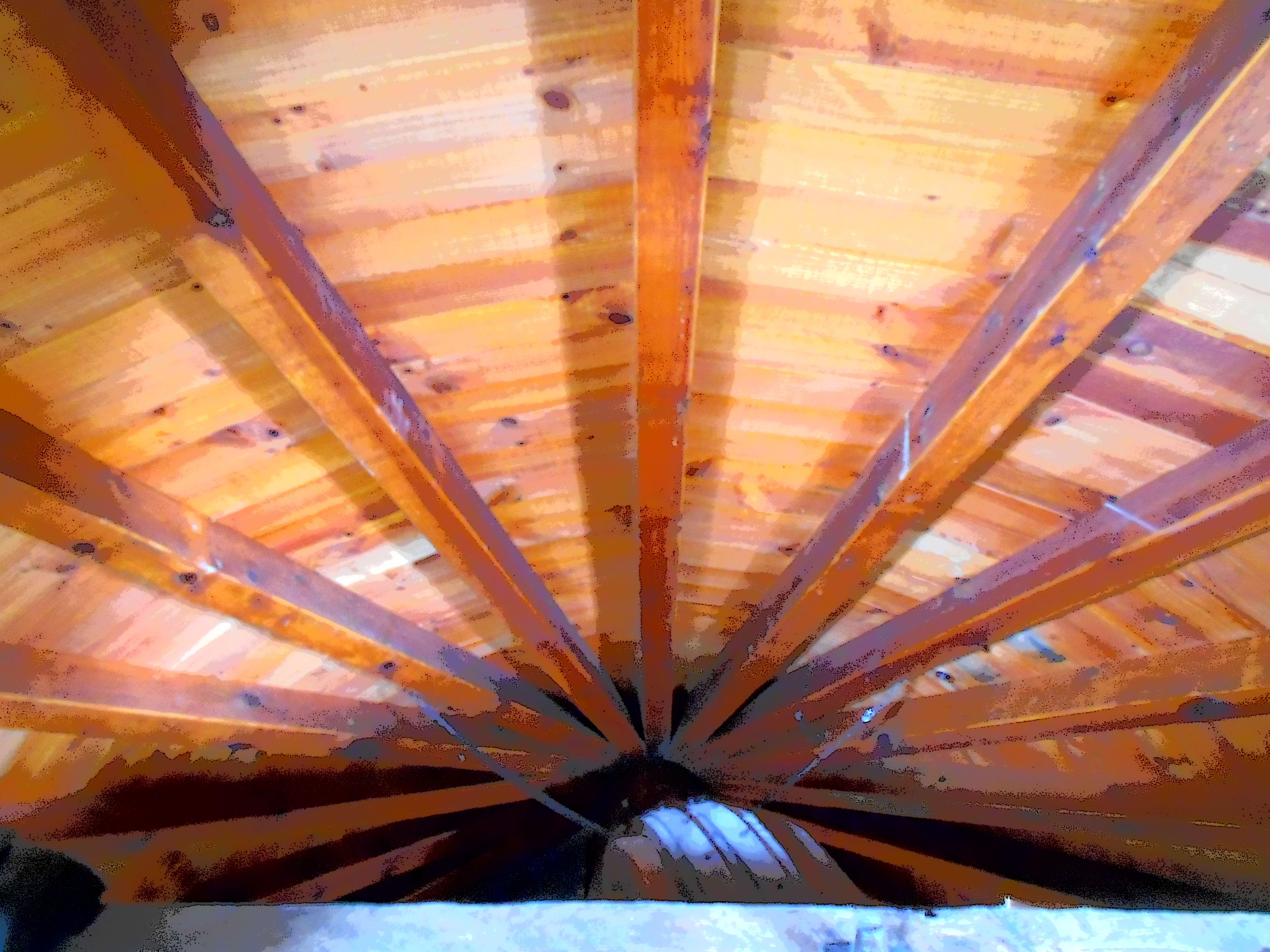 Barras : Costillas , horizontales  y plumas, verticales m  que sujetan y mantienen la forma cónica de la cubierta.
