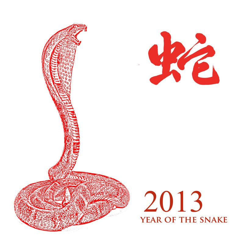 Year of the snake 2013  | China Horoskop 2013!