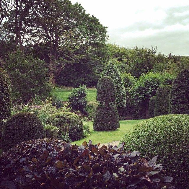 Garden Design Videos arne maynard garden design (@arnemaynardgardendesign) • instagram